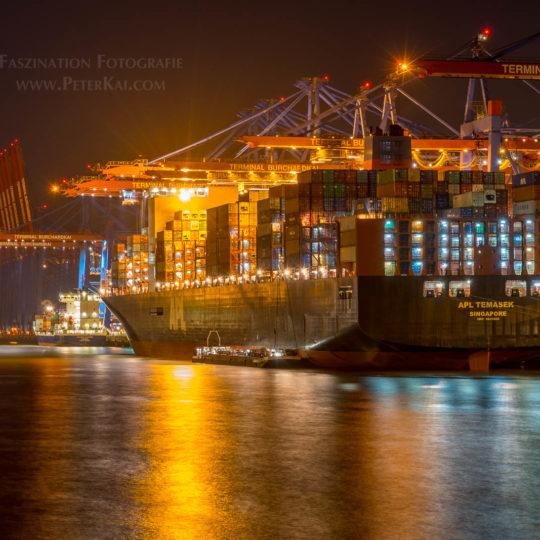 Hamburg - Containerterminal Burchardkai - Waltershofer Damm