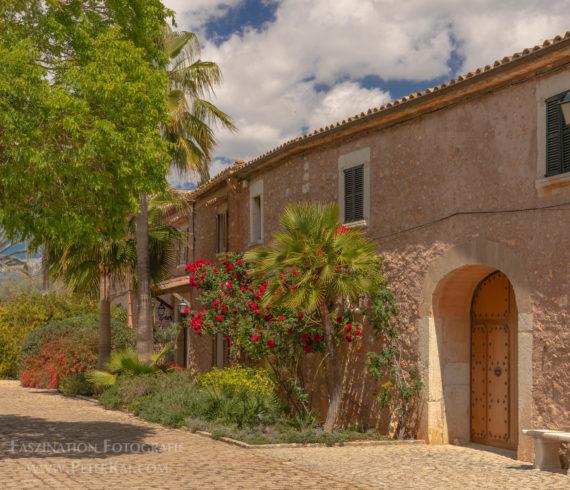 Mallorca – Weingut in Biniagual